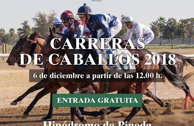 Las carreras de caballos de Pineda se vuelven a incluir en el calendario de la apuesta h&iacute;pica de SELAE<br />