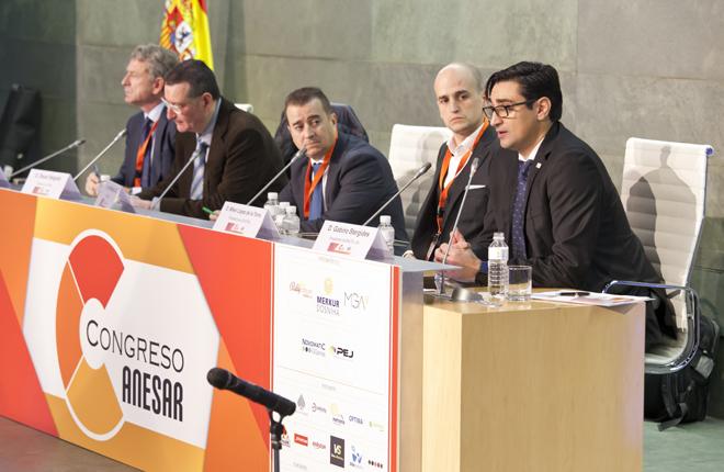 <strong>EXCELENTES INTERVENCIONES DE GABINO STERGIDES Y MIKEL L&Oacute;PEZ EN EL CONGRESO DE ANESAR</strong><br />